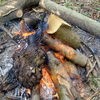 Woodland camp fire