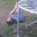 trampolinemonkey.JPG