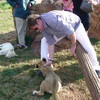 Lion Cub biting my hand