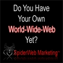 The Spiderweb Marketing System